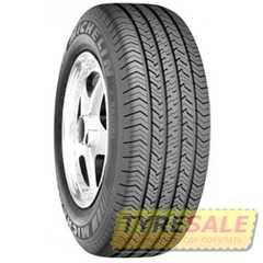Всесезонная шина MICHELIN X Radial - Интернет магазин шин и дисков по минимальным ценам с доставкой по Украине TyreSale.com.ua