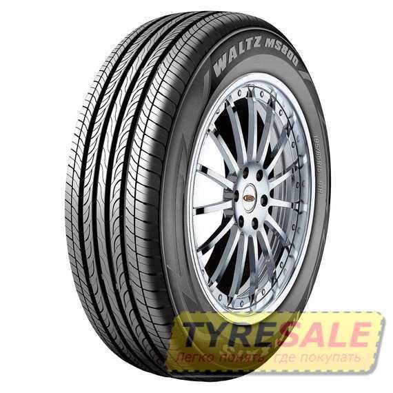 Летняя шина MAXXIS MS-800 - Интернет магазин шин и дисков по минимальным ценам с доставкой по Украине TyreSale.com.ua